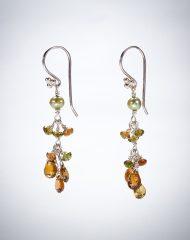 hr-earrings-whiskey-tourmaline